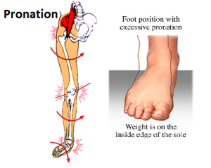 pronation big picture